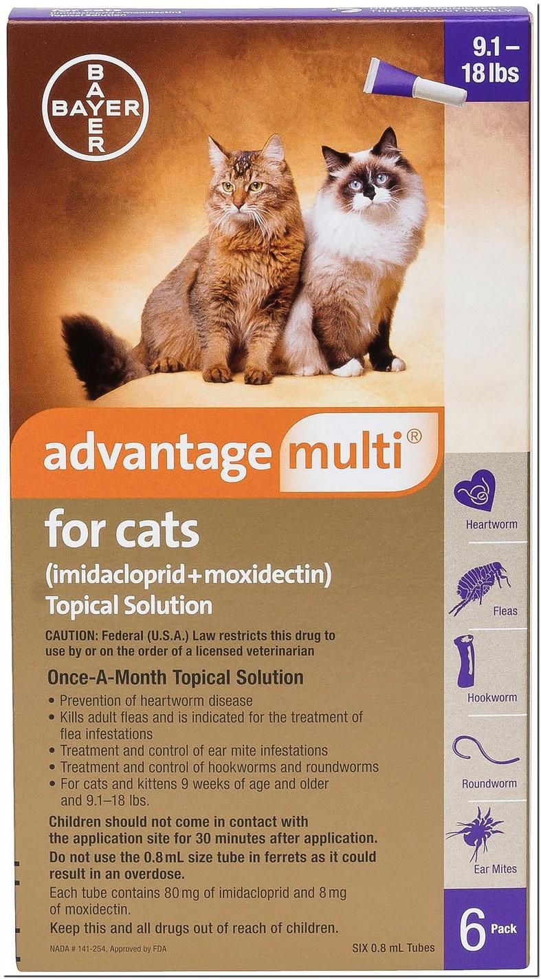 Advantage Dosage For Cats