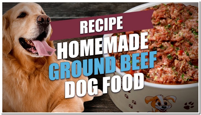 Boiled Ground Beef And Rice For Dogs