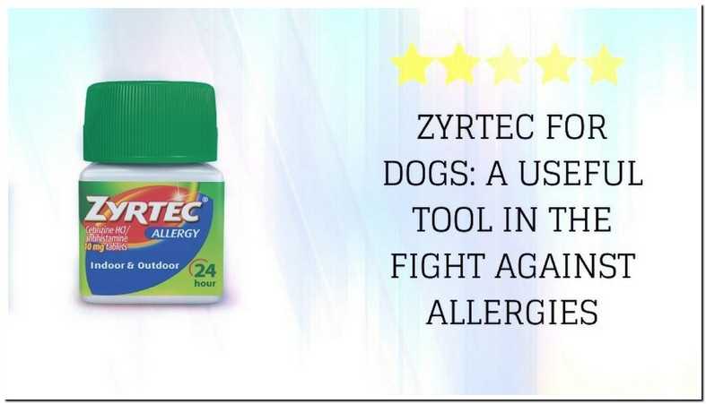 Can I Give Zyrtec To My Dog