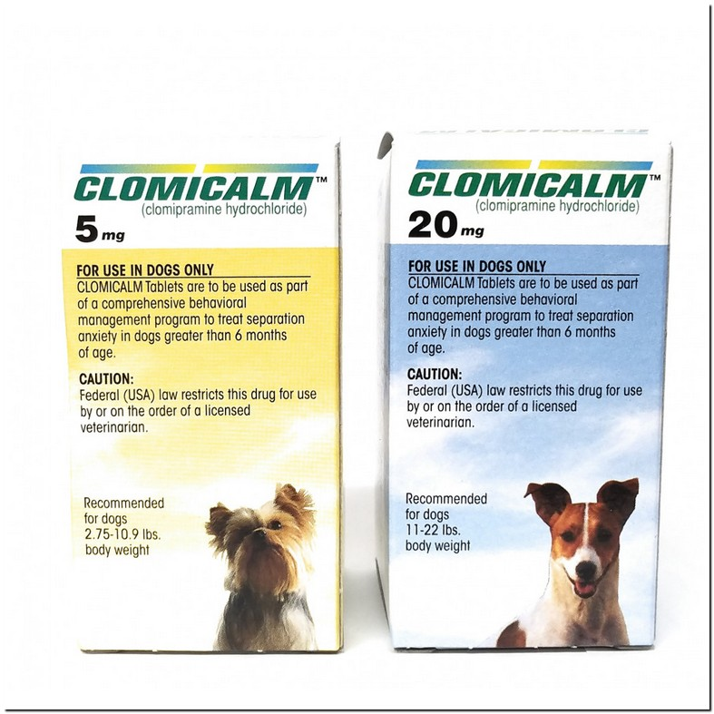 Clomicalm For Cats Anxiety