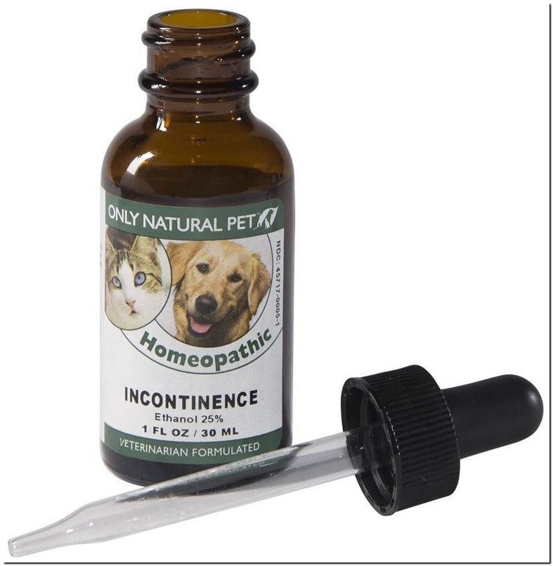 Natural Treatment For Overactive Bladder In Dogs