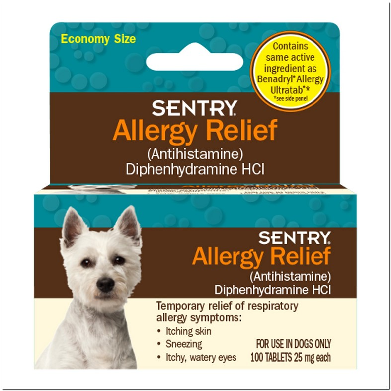 Over The Counter Eye Drops For Dogs Allergies