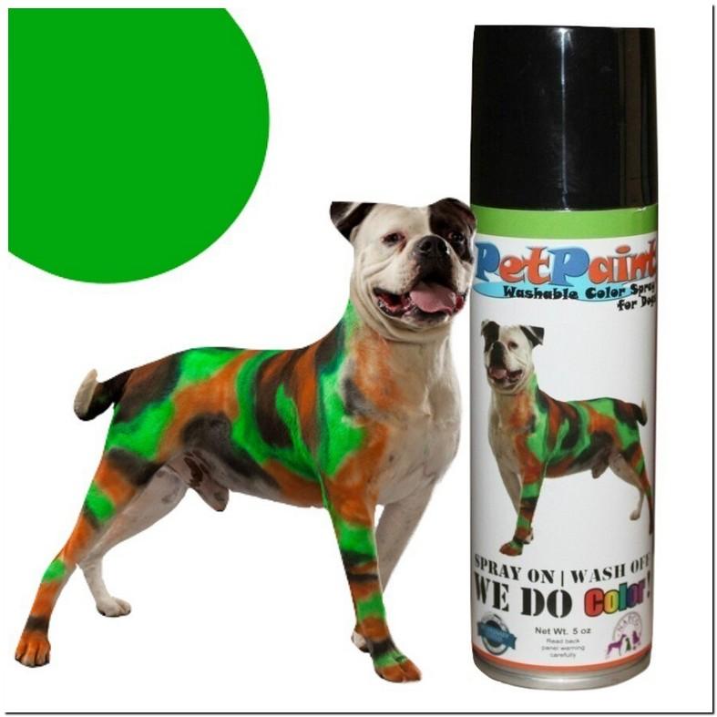 Pet Safe Spray Paint