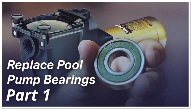 Sta Rite Pool Pump Motor Bearing Replacement