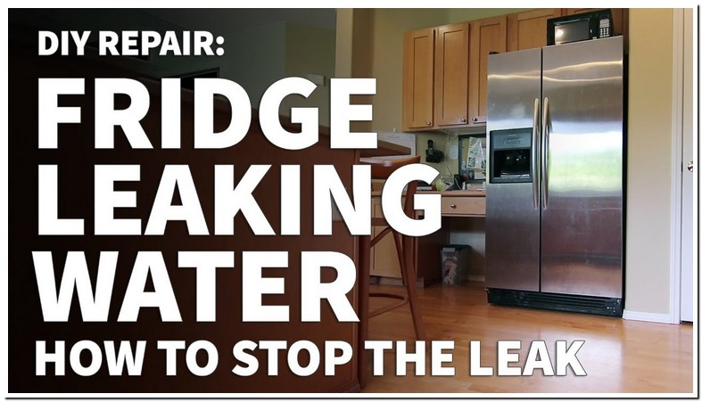 Water Leaking From Refrigerator To Floor
